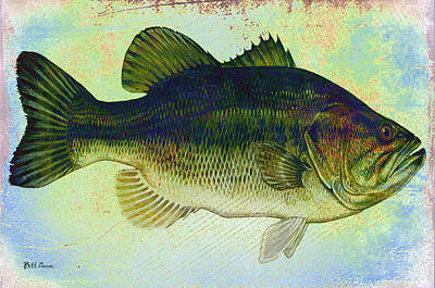 The Big Fish Art Print by Bill Cannon