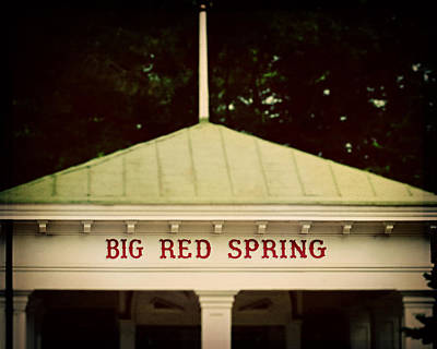 Metal Roof Photograph - The Big Red Spring by Lisa Russo