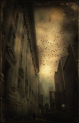The Birds Art Print by Peter Labrosse