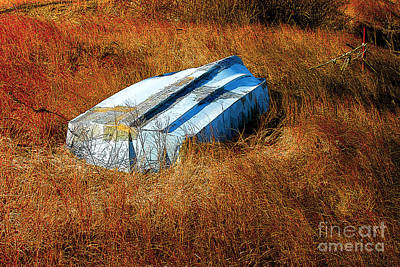 Andrew Wyeth Photograph - The Boat by Mike Nellums