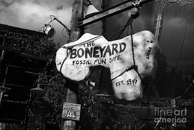 Photograph - The Boneyard Sign Animal Kingdom Walt Disney World Prints Black And White by Shawn O'Brien