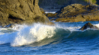 Photograph - The Breaking Wave by Loree Johnson
