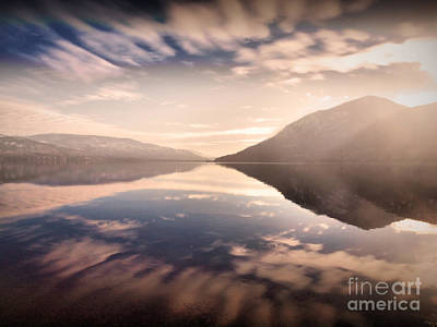 Photograph - The Bright Light Of Morning by Tara Turner