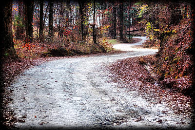Art Print featuring the photograph The Broken Road by Lynne Jenkins