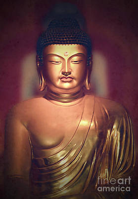 Photograph - The Buddha by Paul Topp