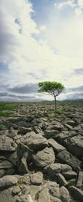 Burren Photograph - The Burren, On Kinvara Side, Co Clare by The Irish Image Collection