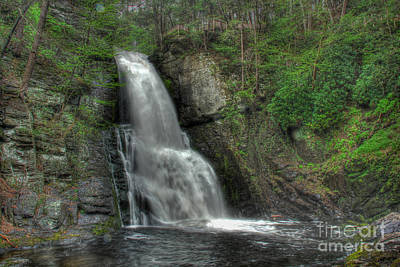 Photograph - The Bushkill Waterfalls  by Lee Dos Santos