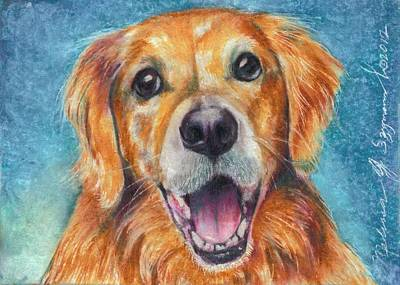 Drawing - the Butter dog by Melissa J Szymanski