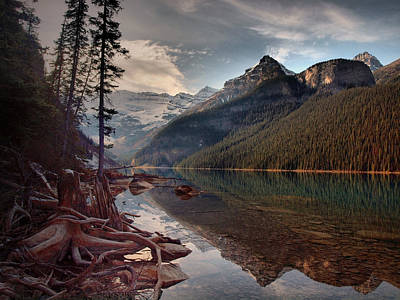 Photograph - The Calm At Lake Louise by Tara Turner