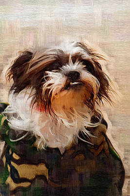 The Camo Makes The Dog Art Print by Kathy Clark