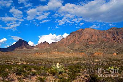 The Chisos Mountains Big Bend Texas Art Print by Gregory G Dimijian MD