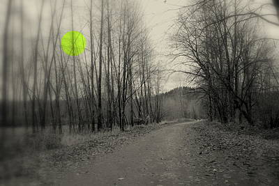 Photograph - The Circle Green - Bare Walkin Trail by Kathleen Grace