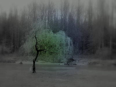 Photograph - The Circle Green - Tree By The River by Kathleen Grace