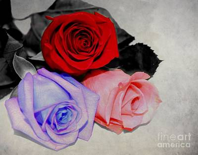 Photograph - The Color Of My Love by Davandra Cribbie