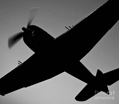 Photograph - The Commemorative Air Forces F6f-5 by Scott Germain