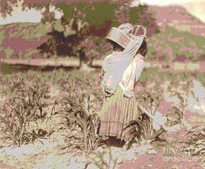 Cornfield Photograph - The Cornfield by Padre Art