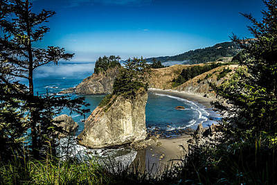 Art Print featuring the photograph The Cove by Randy Wood
