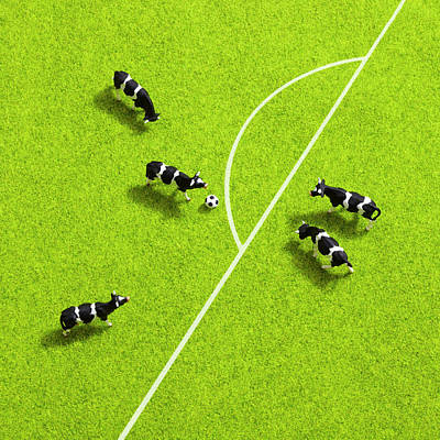 The Cows Playing Soccer Art Print