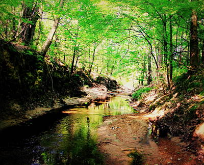 Photograph - The Creek 1 by Hannah Miller