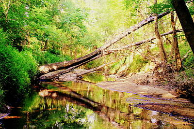 Photograph - The Creek 2 by Hannah Miller