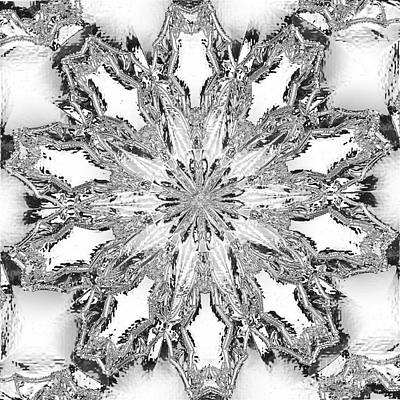 Photograph - The Crystal Snow Flake by Donna Brown