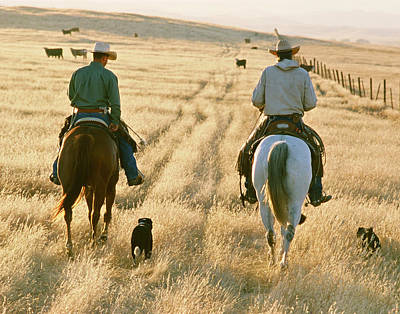 Working Cowboy Photograph - The Cunningham by Diane Bohna