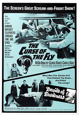 Cult Film Photograph - The Curse Of The Fly, 1965 by Everett