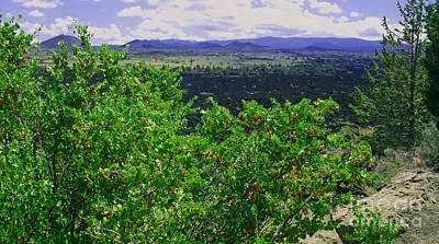 Photograph - The Devil's Homestead Overlook by Methune Hively