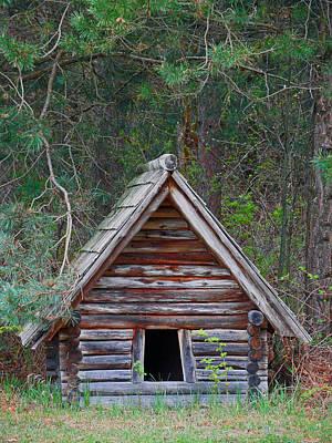 Photograph - The Dog House by Cyryn Fyrcyd