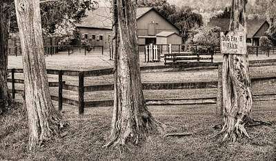Dogpatch Photograph - The Dog Patch Bw by JC Findley