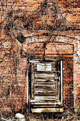 Photograph - The Door by Emily Stauring