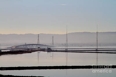 The Dumbarton Bridge In The Bay Area Viewed Through Coyote Hills California . 7d10961 Art Print by Wingsdomain Art and Photography