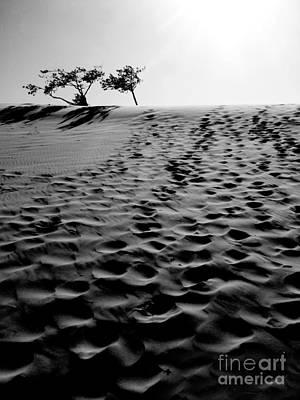 The Dunes At Dusk Art Print by Tara Turner