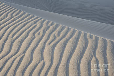 The Edge Of Sand Art Print by Ron Hoggard