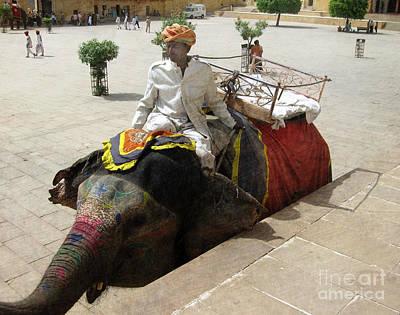 Festivals Of India Photograph - The Elephant Jockey Of India by Paul Ward