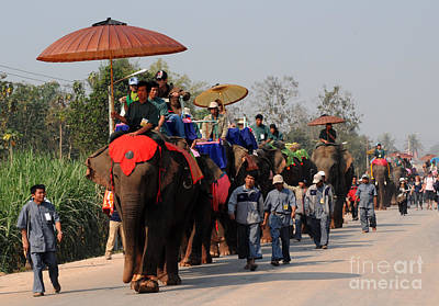 Art Print featuring the photograph The Elephant Parade by Vivian Christopher