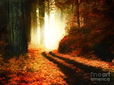 Blending Photograph - The Enchanted Autumn Forest by Lee-Anne Rafferty-Evans