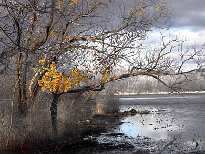 Photograph - The End Of Autumn by Viola El
