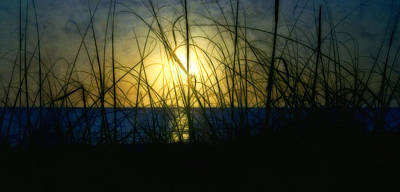 Photograph - The End Of The Day by Ellen Heaverlo