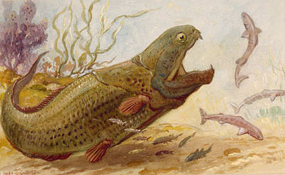 The Extinct Dinichthys Fish Could Grow Art Print