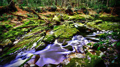 Www.doublevision-images.com Digital Art - The Fairy Brook by Kim Shatwell-Irishphotographer
