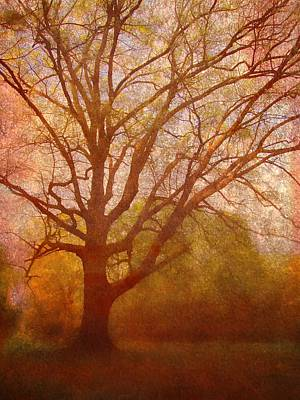 The Fairy Tree Print by Brett Pfister
