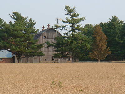 Art Print featuring the photograph The Farm by Bonfire Photography
