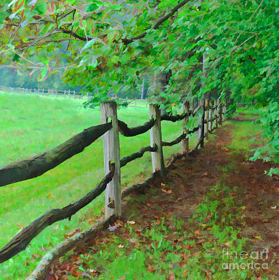 The Fence Path Art Print