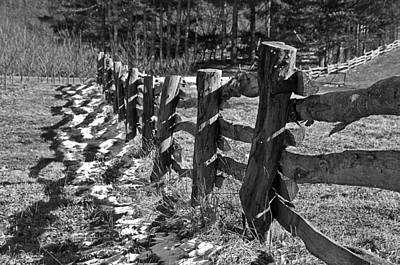 The Fence Print by Susan Leggett