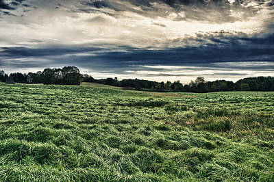 Photograph - The Field by Edward Myers