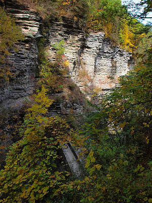 Photograph - The First Bridge At Watkins Glen by Joshua House