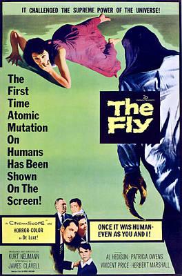 The Fly, Bottom Center, Clockwise Print by Everett