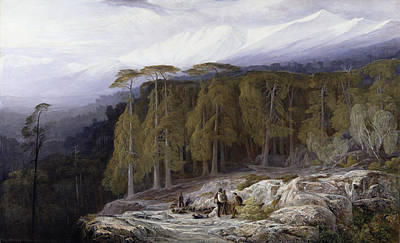 Mountain Painting - The Forest Of Valdoniello - Corsica by Edward Lear
