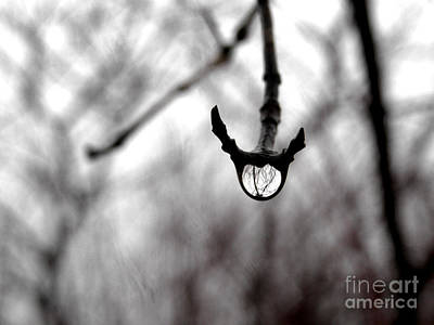 The Foretelling - Raindrop Reflection Art Print